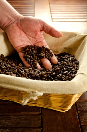 Hand taking roasted coffee beans from a basket photo