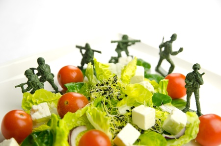 Military toy soldiers defending healthy food, the weight loss war Stock Photo - 17410842