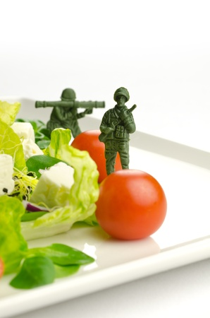 weight loss plan: Military toy soldiers defending healthy food, the weight loss war Stock Photo