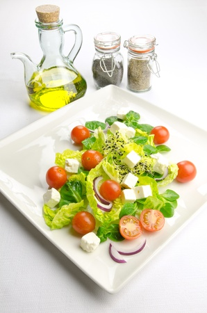 Diet time, fresh salad for a healthy lifestyle photo