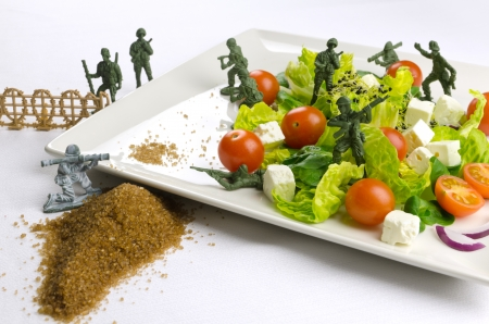 Military toy soldiers defending healthy food, the weight loss war photo