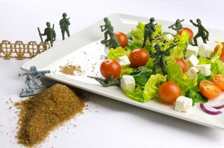 weight loss plan: Soldatini militari difendono cibo sano, la guerra la perdita di peso