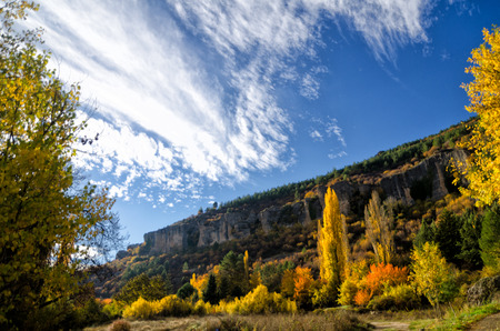 Fall colors, trees and mountains photo