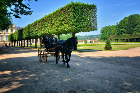 horse and carriage: Castle of Luneville, carriage parade in the park
