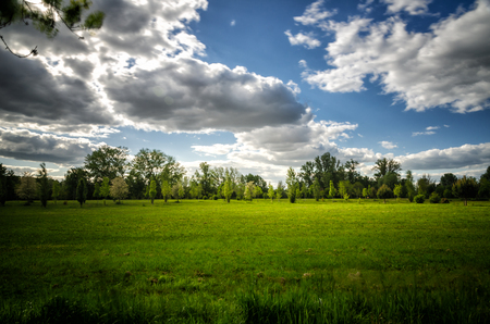 Vibrant landscape with green meadows, trees, blue sky and white clouds in the background with country path 写真素材