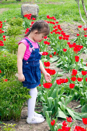 Girl among the tulips photo