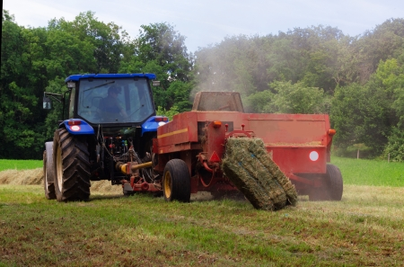 tractor removes the grass on the farm