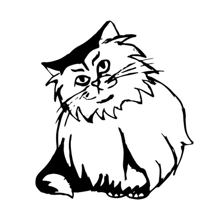 Graphic image of a cat with shaggy fur. Abstract cat print on white background. vector