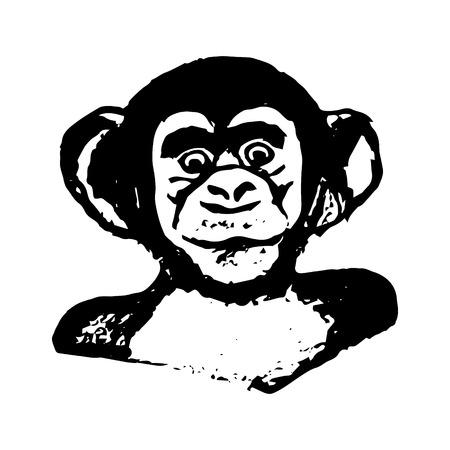 chimpances: Cabeza de mono (gráficos) - chimpancés Vectores
