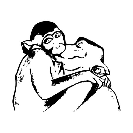 A graphic image of two kissing monkeys. The embodiment of love, love animals. The pattern of black lines on white background Illustration