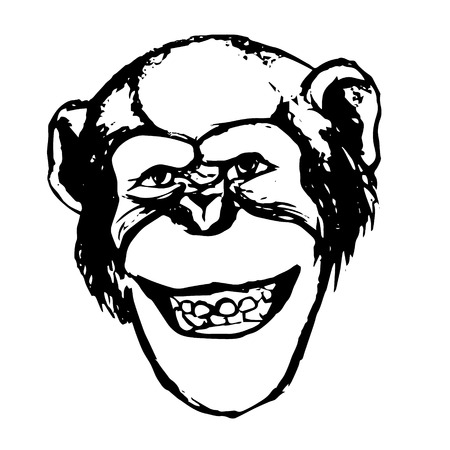 The graphic image of the monkey. Chimp adopts a grimace - smiles, grins, shows teeth. The figure of a monkeys head on a white background. Abstract illustration