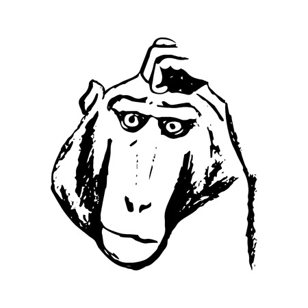 The graphic image of the monkey who thinks. Abstract pattern of black lines on a white background. Picture the emotions of the monkey, the monkey head. Vector illustration