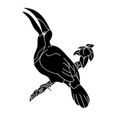 white: The graphic image of a tropical bird with a large beak. The picture birds on a branch on white background, vector