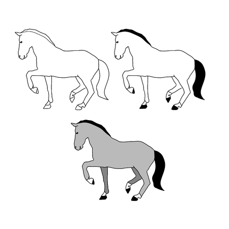 gait: The contour of the horse on a white background, a gray stallion walks. Vector illustration set of abstract images Illustration