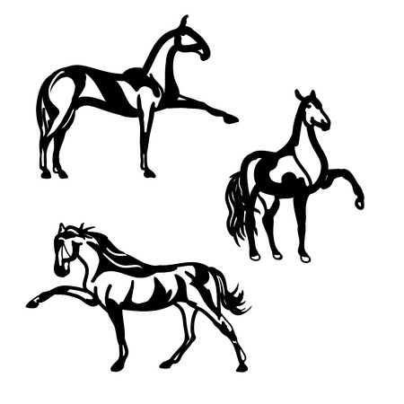Set of black silhouettes of horses. Vector illustration on a white background. Image sport horses.