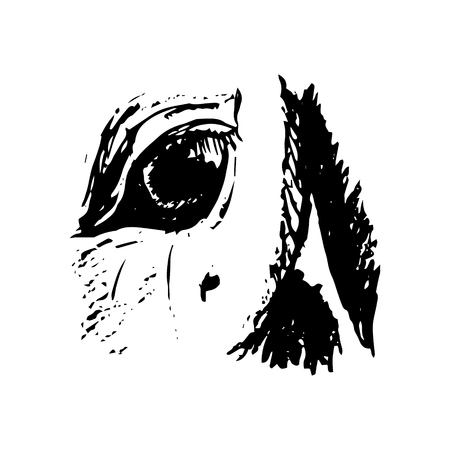 Graphic image of eyes of a horse on a white background. Abstract drawing of a horses head. Vector illustration