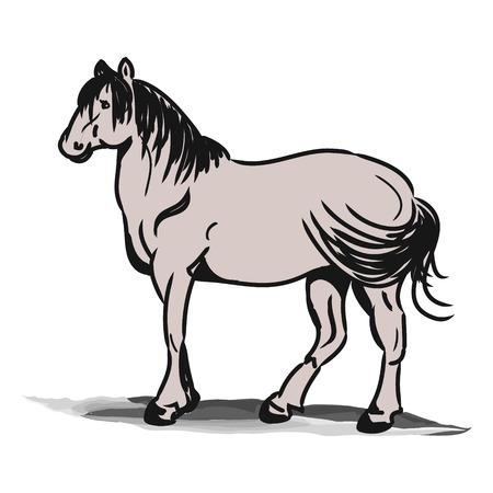 L'image graphique du cheval. Cheval simple dessinant des lignes noires, abstraction. Vecteurs