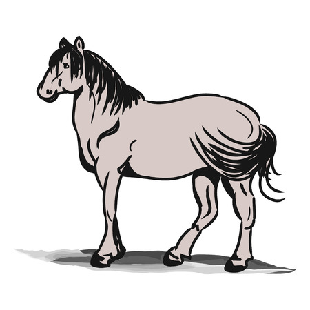 The graphic image of the horse. Simple horse drawing black lines, abstraction. Illustration