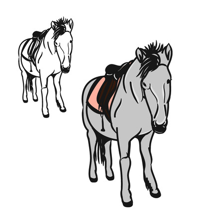 Graphic image of a little horse. Set of two circuits, one painted color. A pony with a saddle on his back, the bridle - figure abstraction. Vector illustration on a white background Illustration