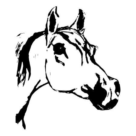 A sketch in black pen (vector) on a white background.