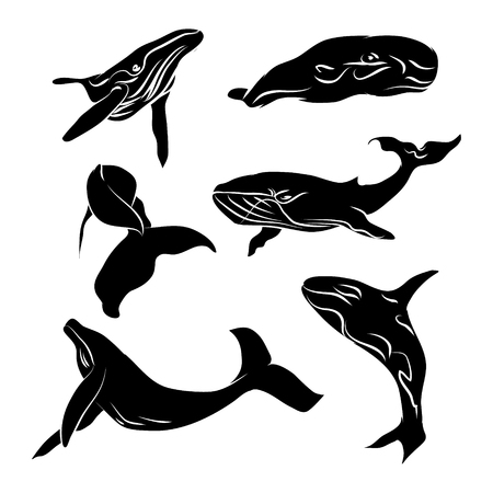 Big whale black silhouette with no outline on a white background (vector illustration)