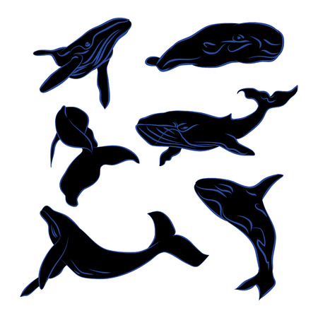 Big whale black silhouette with blue outline on white background (vector illustration)