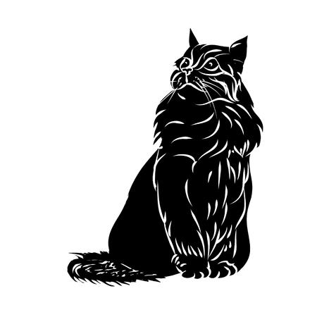 Fluffy cat black silhouette on white background, vector