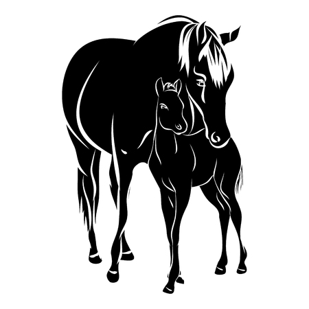 Mare with foal - black silhouette horse on white background, vector