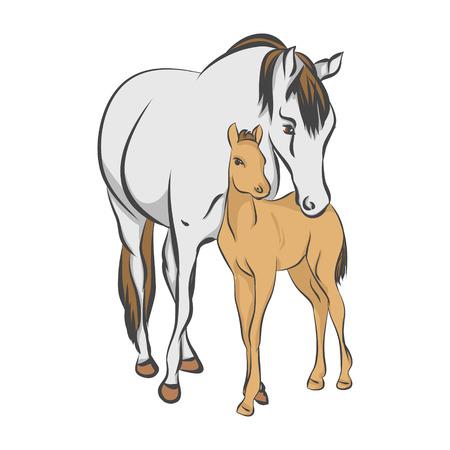 Il cavallo grigio e il suo puledro su uno sfondo bianco, illustrazione vettoriale