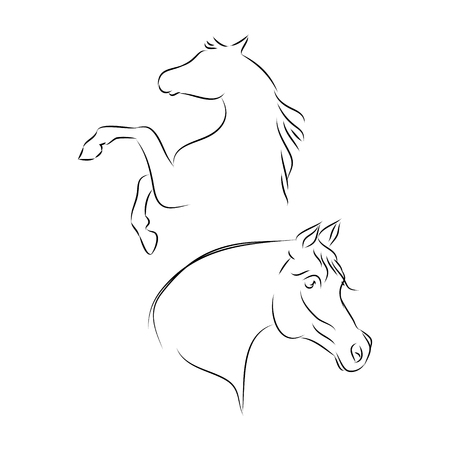 Arabian horse head outline, on a white background, vector