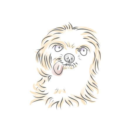 Shaggy puppy head on white background, vector Illustration