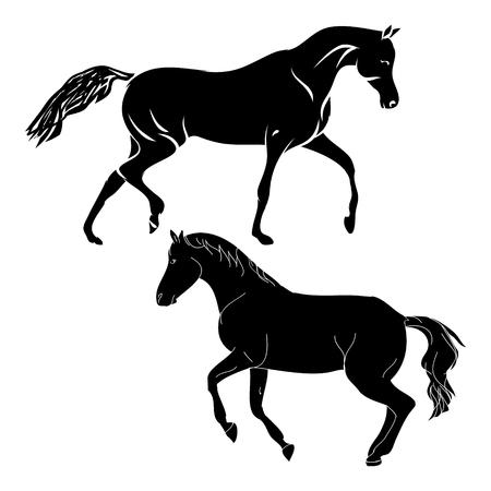 Silhouette horse on white background, vector illustration Illustration
