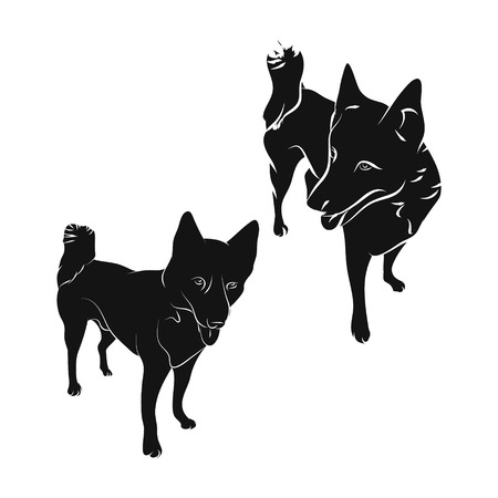 The silhouette of the dog on white background, breed husky. Illustration