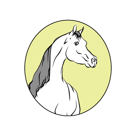 The head of the horse lines in the circle on white background, vector illustration.