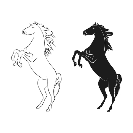 Horse on back legs, outline and silhouette on white background, vector illustration.