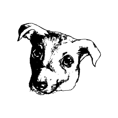 The dog's head on a white background, puppy, vector illustration Stock Illustratie