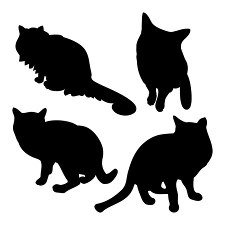 Black cat silhouette on white background