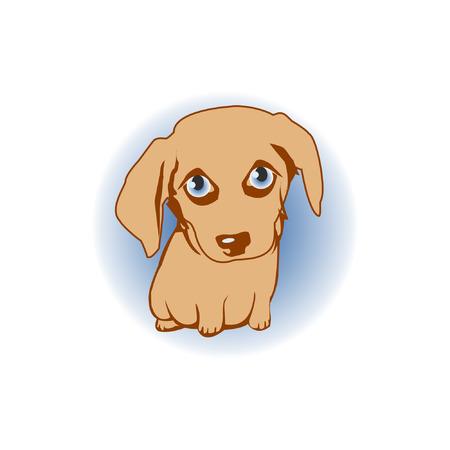 A little puppy with big eyes. Dog's head 矢量图像