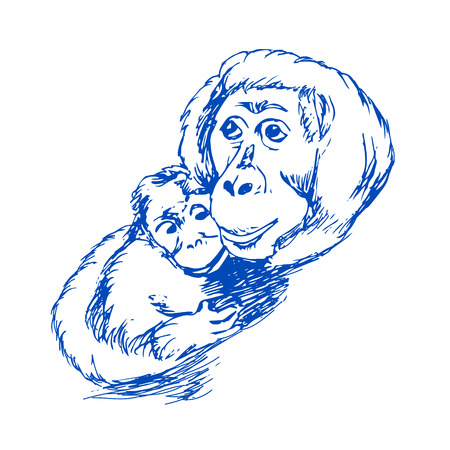Monkey with cub drawing on white background