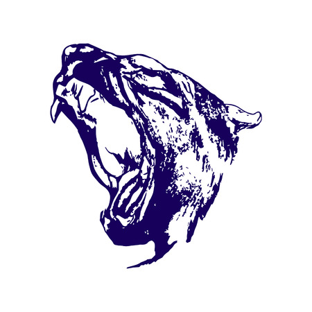 Panther head on a white background, drawing of a blue pen
