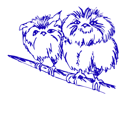 Birds on a branch drawing on white background 免版税图像