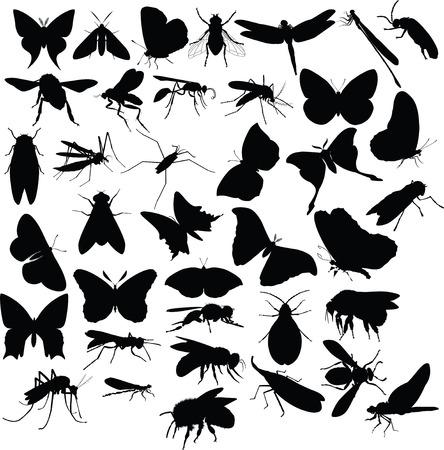 insecten, silhouetten  Stock Illustratie