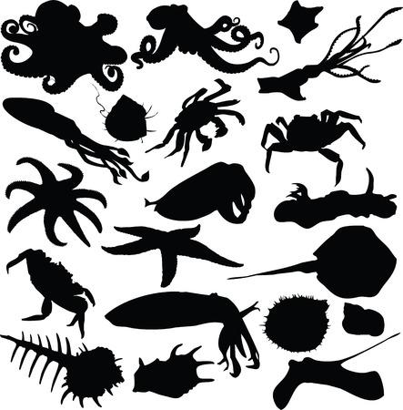 octopus, silhouette Vector