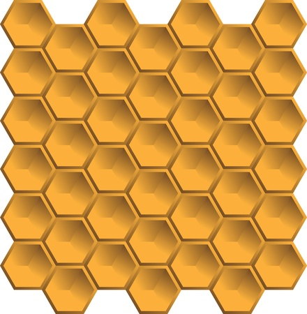 bee hive: bee hive abstract