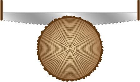 wooden work: seghe per il taglio degli alberi vecchi