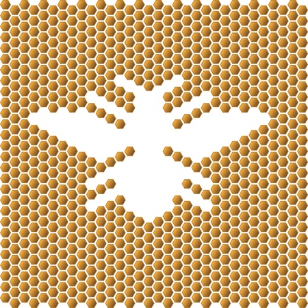 bee flower: honeycomb Illustration