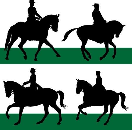 uomo a cavallo: lo sport equestre di cavalli da dressage Vettoriali