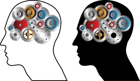 inteligencia: La inteligencia humana