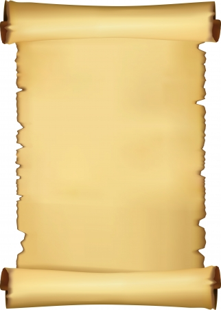 Parchment blank Stock Vector - 16271681