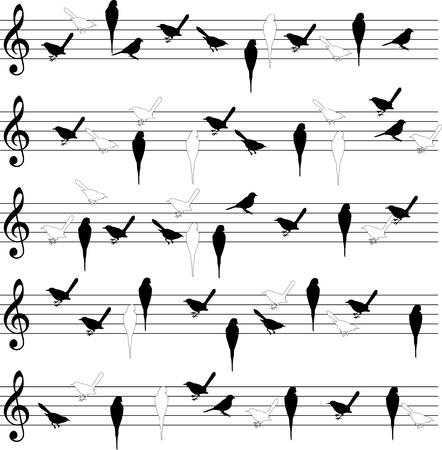 Bird notation lines Stock Vector - 17709945